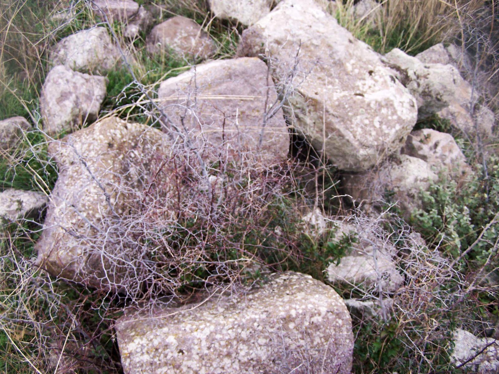 akropol-004-andezit-yapi-taslari-ibrahim-fidanoglu