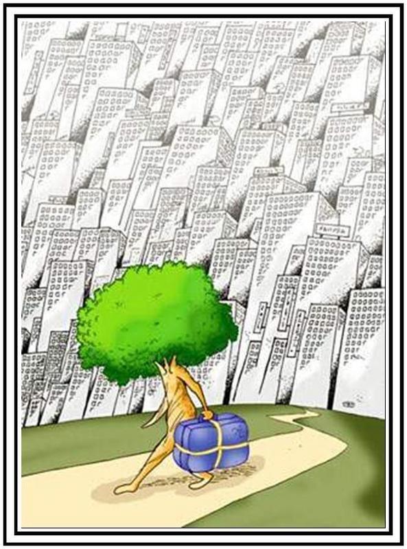 kent-karikaturu-07