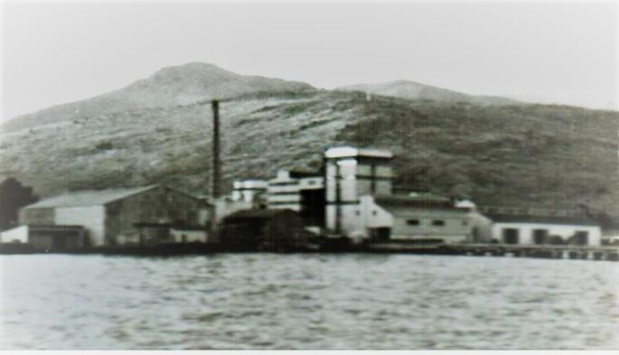 turyag-002