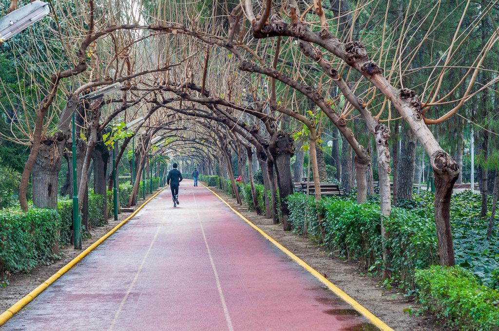 Kültürpark 02