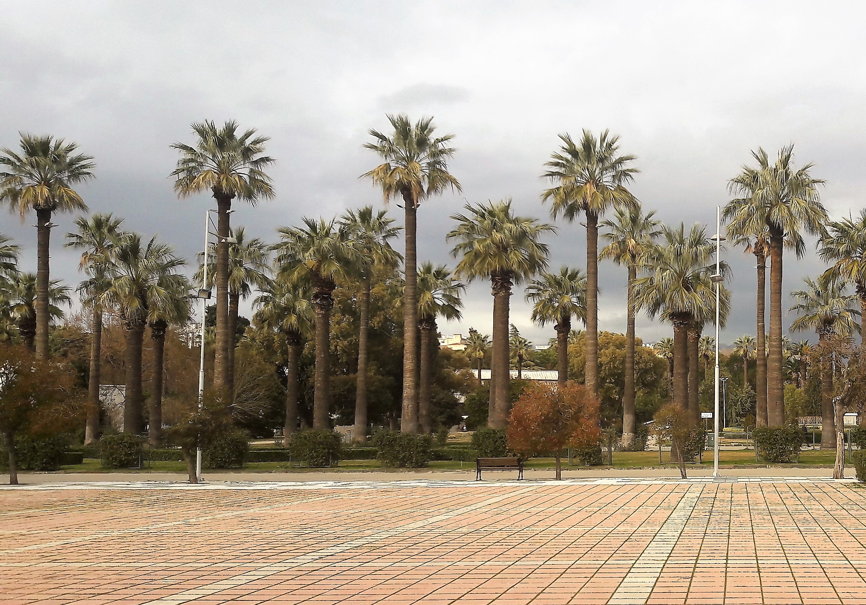 Kültürpark 20.02.2017