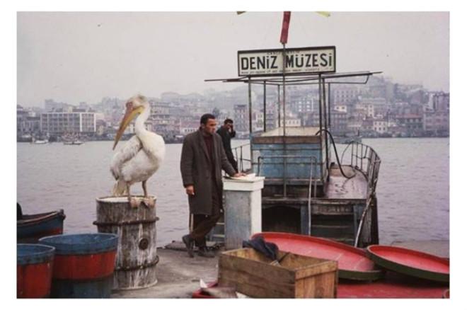 istanbul-un-1950-ve-1960-lardaki-nostaljik-710785_5014_9_b