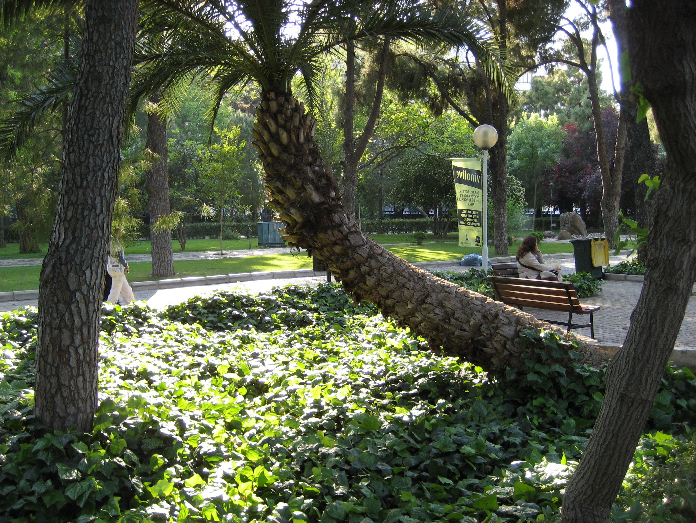Kültürpark