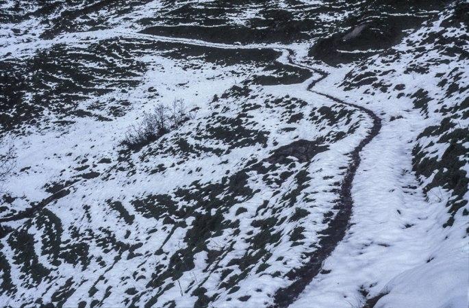 66 Tigerline Walking A Line On The Footpath Along A Fourteen Day Walk In The Glarnisch Massif Switzerland 2010