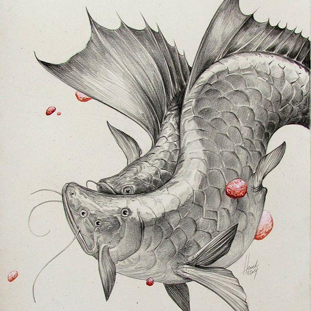 Balıklar 02
