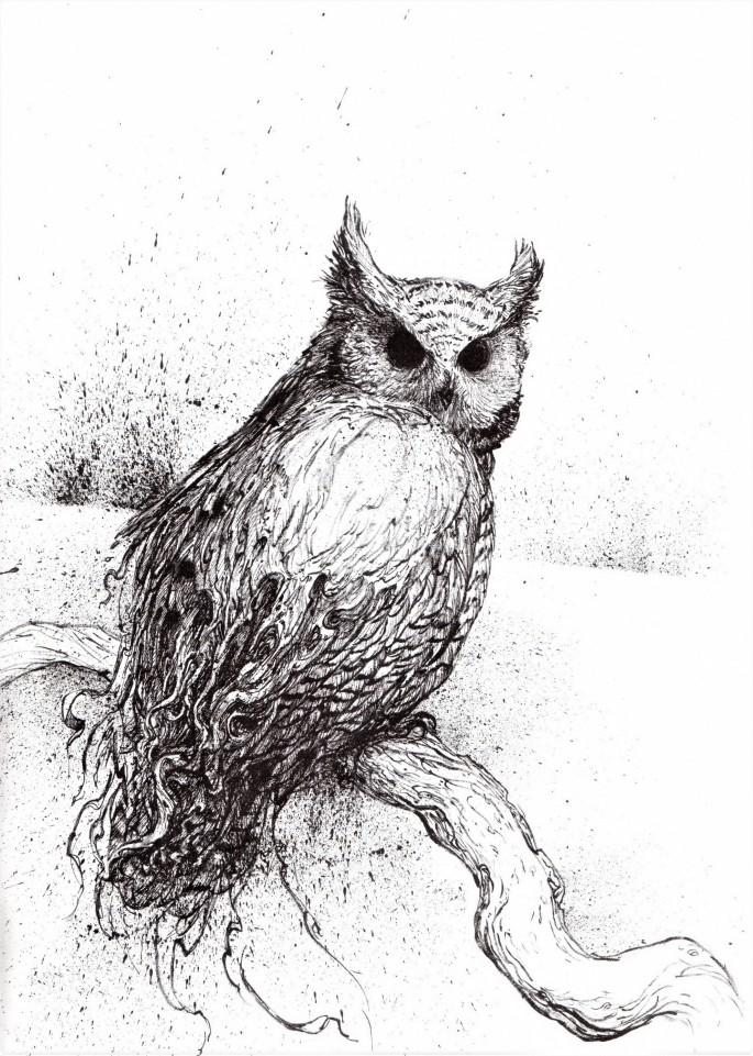 Kör Baykuş 03