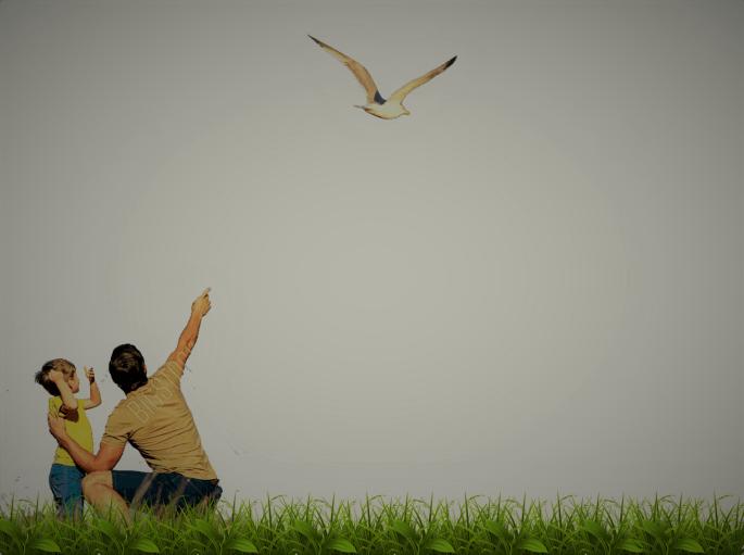 Kuşa Bak